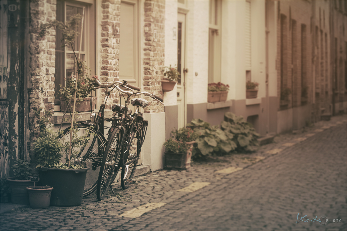 bycicles-in-bruges