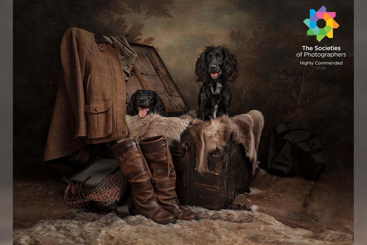 Kerto Studio Gundogs