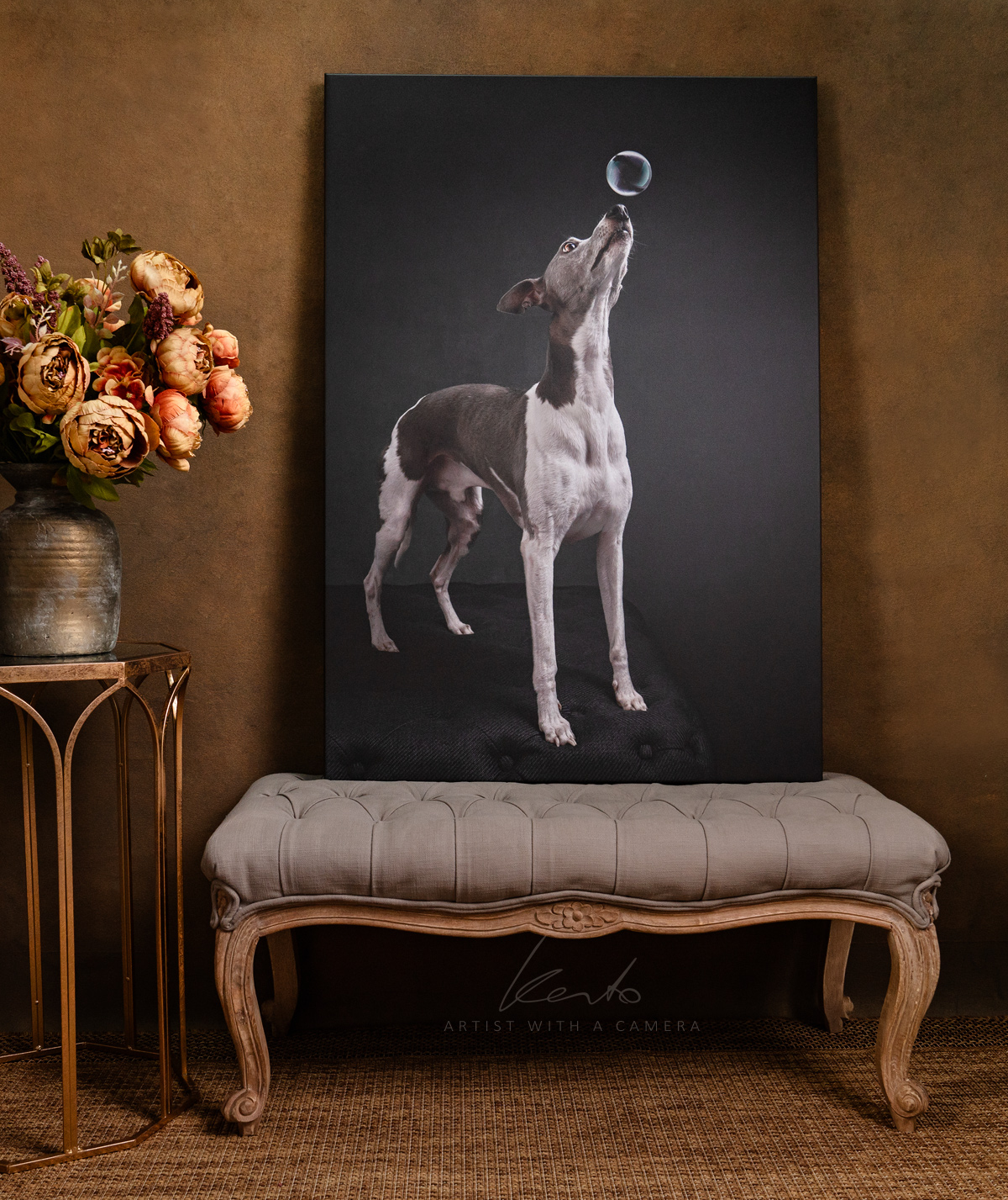 Kerto Studio pet portrait whippet