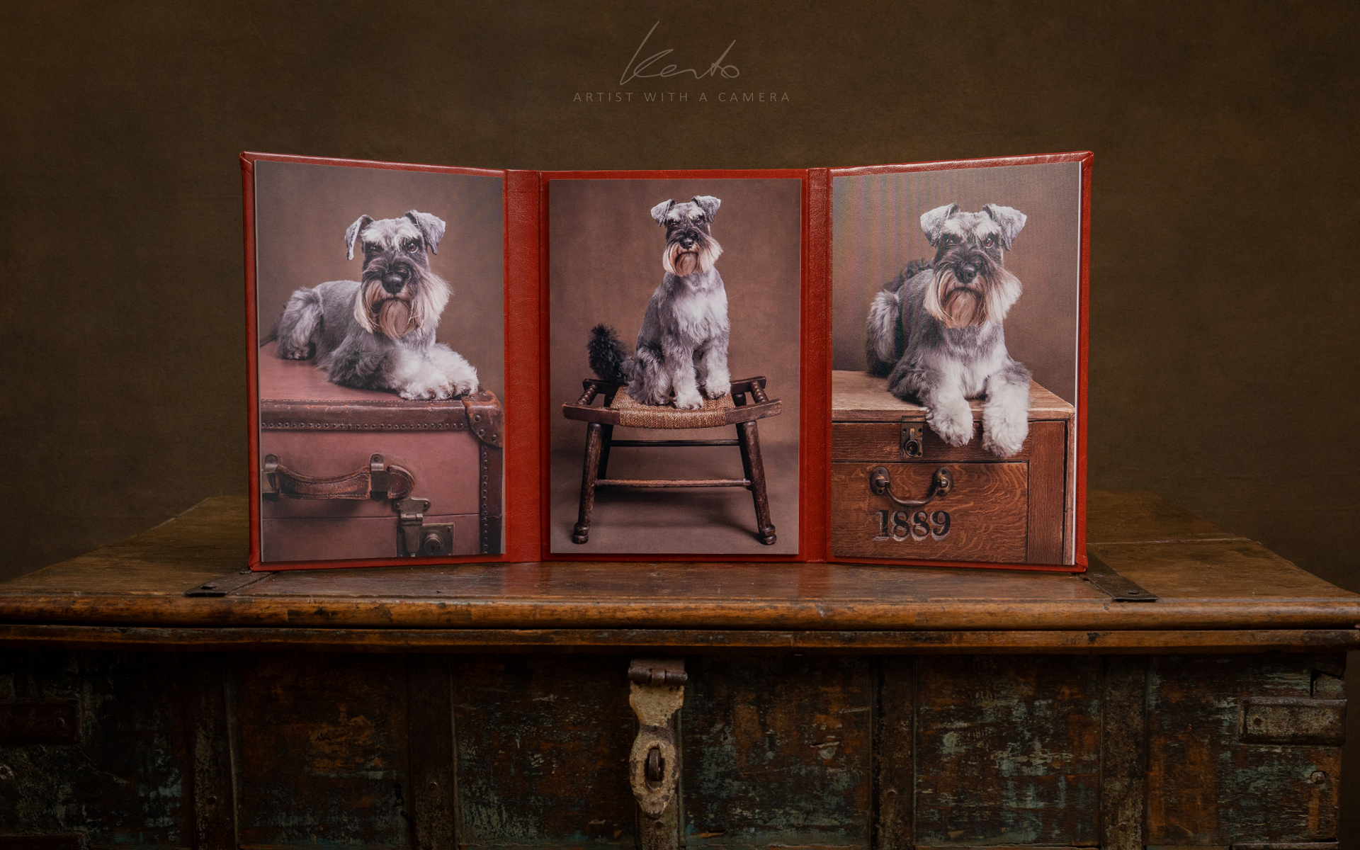 Kerto Studio products tri-fold miniature schnauzer