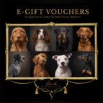 e-gift-vouchers1
