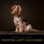 printed-gift-vouchers1